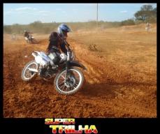 Veloterra - 069- Bicho do Mato
