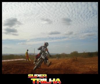 Veloterra - 154- Bicho do Mato