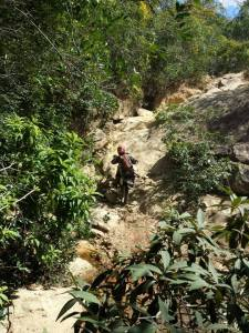 Percurso terá muitas pedras - Crédito: Fausio Silva